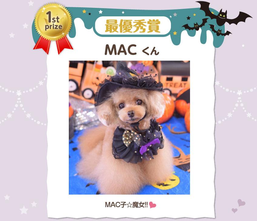 最優秀賞 MACくん